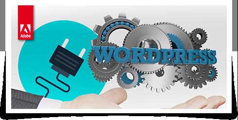 Curso Los mejores Plugins de Wordpress para tu web - Woocommerce